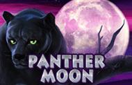 Автомат Лунная Пантера на деньги онлайн